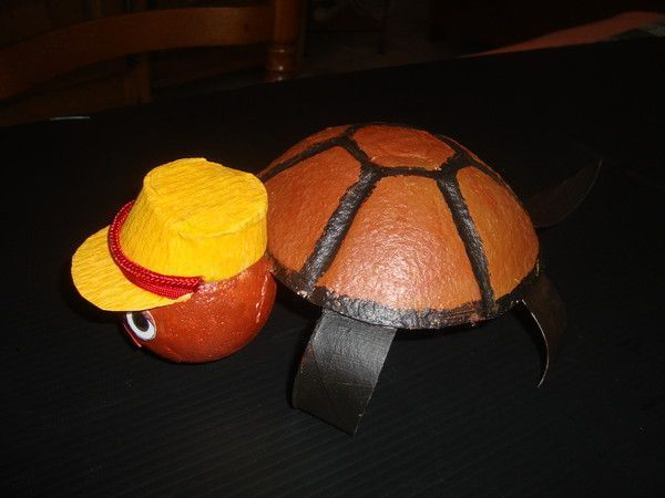 Bricolage tortue carton - Tortue rigolote ...